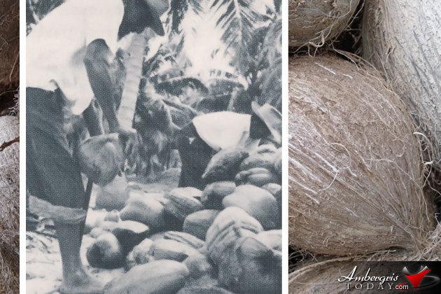 San Pedro Coconut Farmers