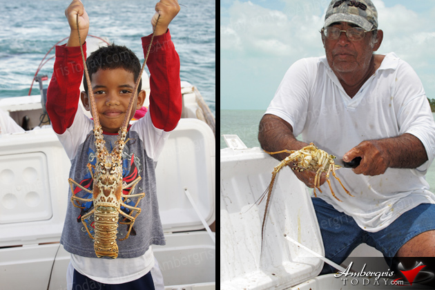 San Pedro, Ambergris Caye Belize Lobster Season -Lobster fishing