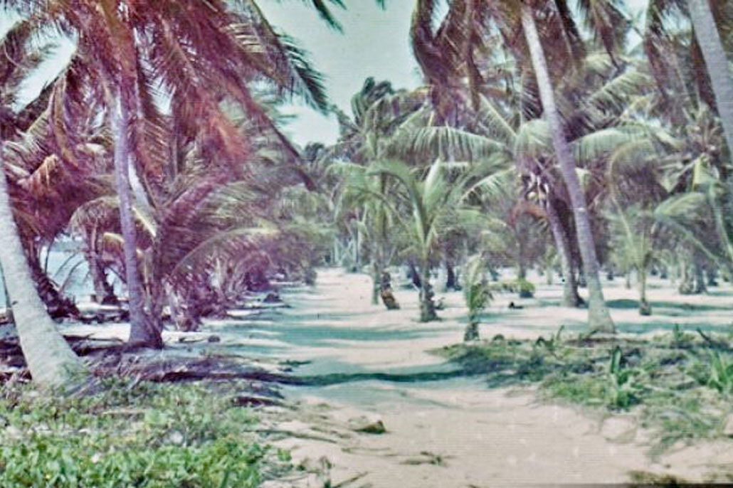 Early Village Life of Our Founding Fathers, Ambergris Caye