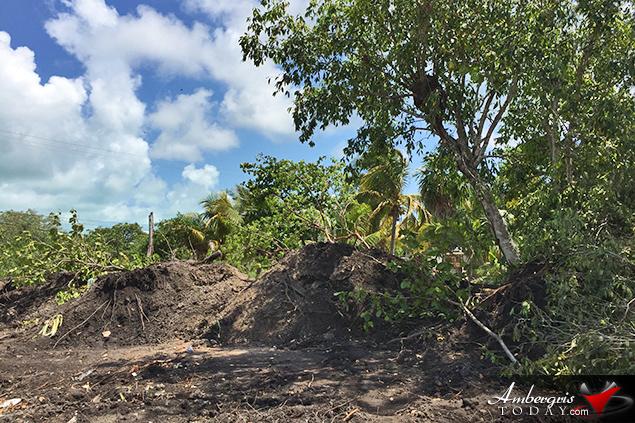 San Pablo Property Identified with Maya Mound Leveled by Developers