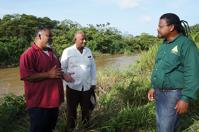 Nemo Minister In The South Following Weekend Flooding