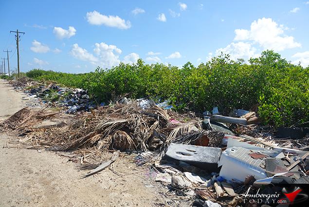 BTIA's Big Garbage Clean Up on Ambergris Caye