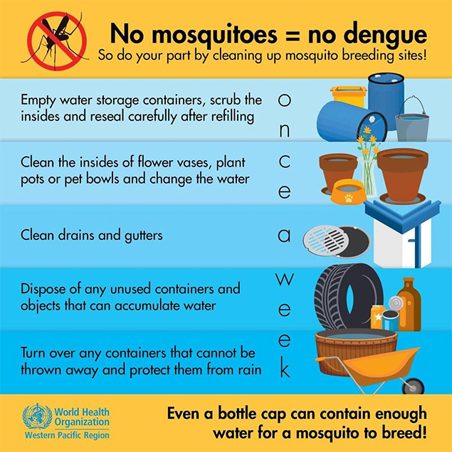 Dengue Outbreak In Belize