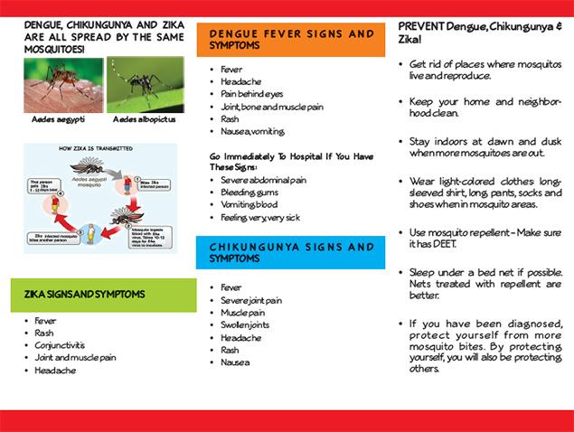 Dengue Outbreak In Belize