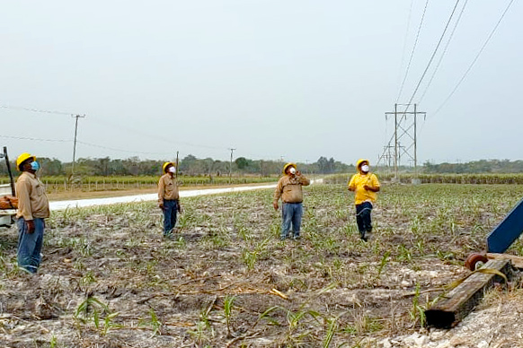 BEL Battling Effects of Extreme Weather Conditions on Power System