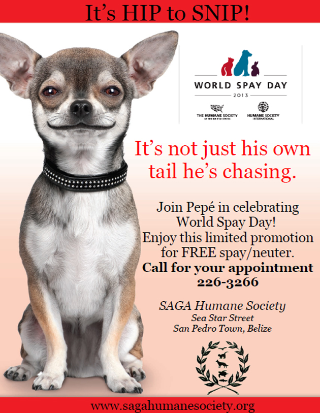 World Spay Day