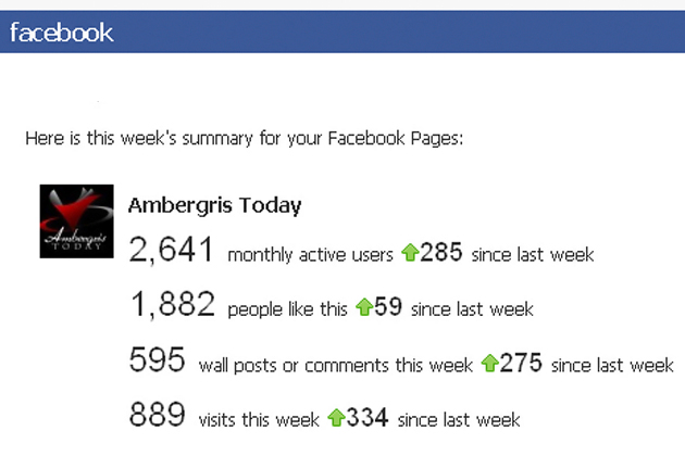 Ambergris Today Facebook Stats
