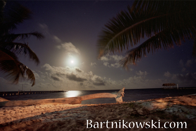 Mary Bartnikowski Photography