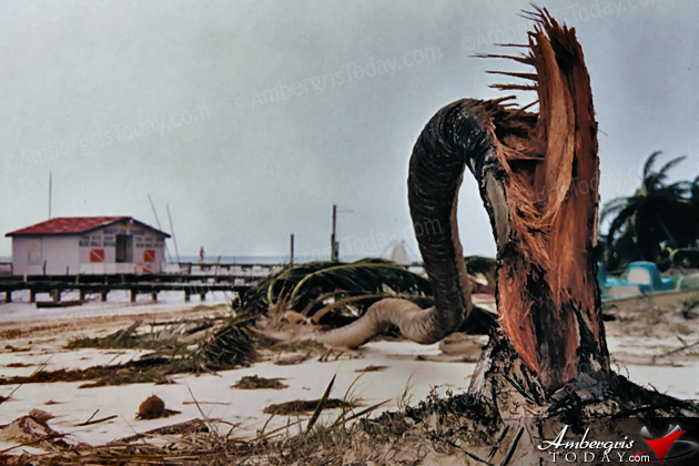 The Furry of Hurricane Keith in 2000 that hit San Pedro, Ambergris Caye, Belize