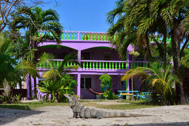 Sands Hotel in Ambergris Caye Transforms Into Hostel La VistaSands Hotel in Ambergris Caye Transforms Into Hostel La Vista