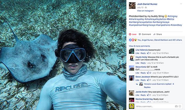 Wild Underwater Encounters in Belize