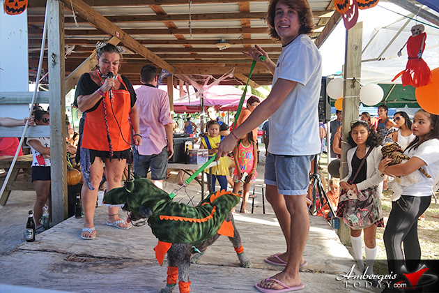 Dogs Enjoy Halloween in San Pedro Too