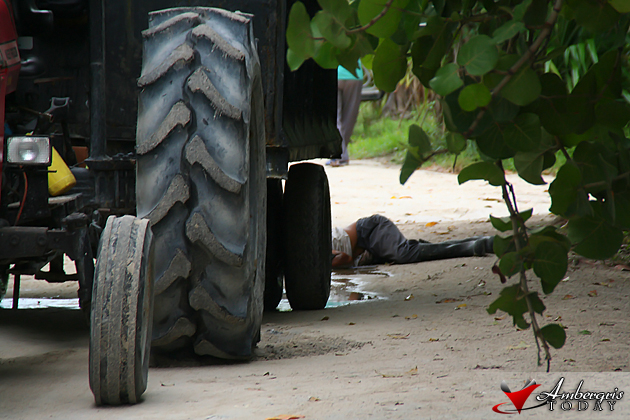 Man Crushed To Death By Town Garbage Truck Ambergris