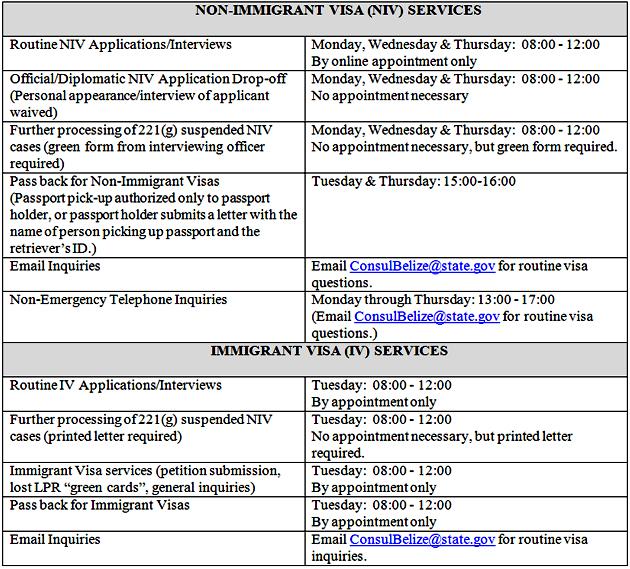 Non Immigrant Visa Services
