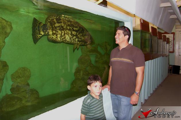 St. Georges Caye Aquarium