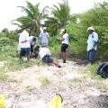 Marine Turtle Conservation in San Pedro
