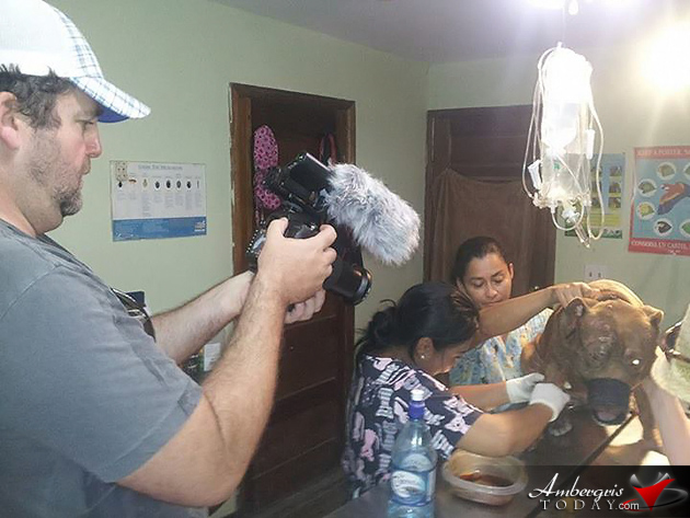 Filmmakers Highlight Saga Humane Society's Hard Work in San Pedro