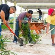 Canary Coves Sponsors Park Beautification
