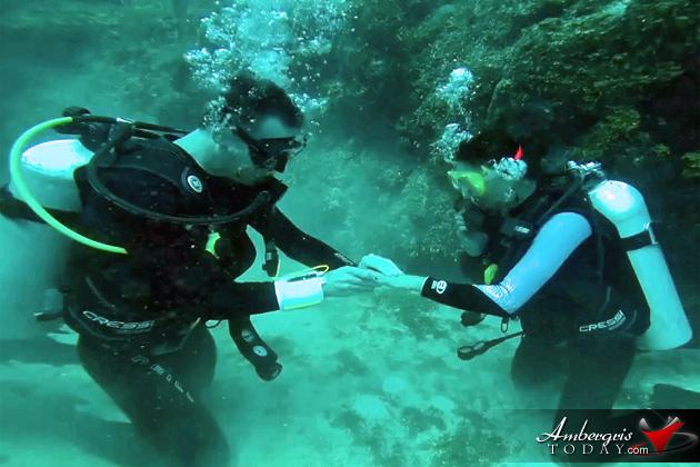 A Valentine's Day Surprise Dive Proposal in San Pedro, Belize