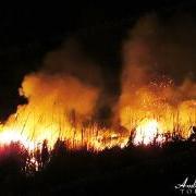 Brush Fire Threatened San Pablo Neighborhood