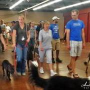 SAGA Board Directors Train with Leading Dog Experts Abroad