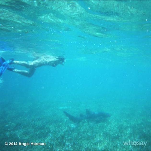 Celebrity Spotting – Angie Harmon Vacations in Belize