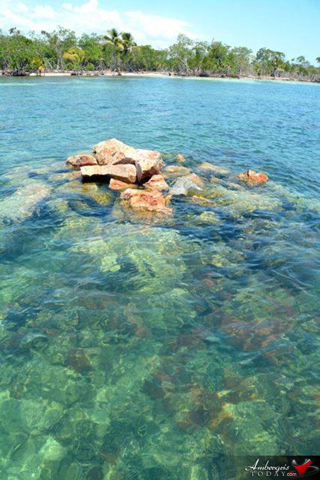 Harvest Caye Coral Reef Damage