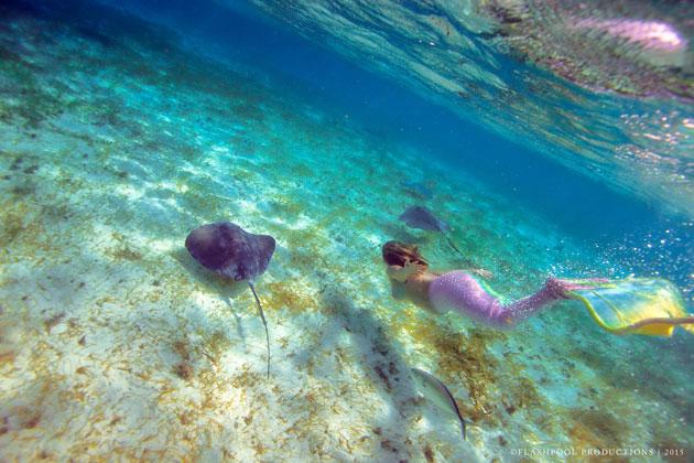 Mermaids Visit Hol Chan Marine Reserve