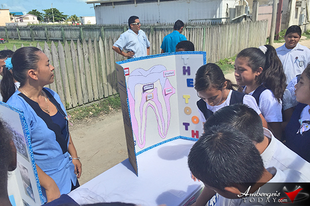 Students Awarded for Top Posters During Dental Health Week