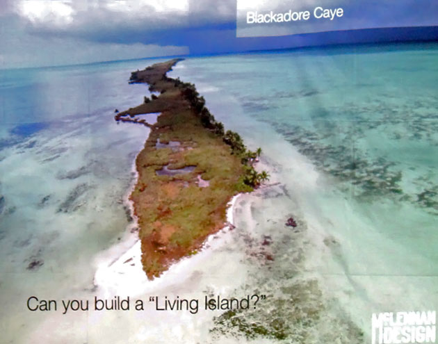Leonardo DiCaprio's Blackadore Caye Does Not Sit Well with Fishermen in Belize