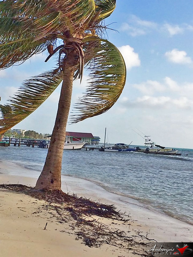 Unpredictable Weather in Belize, High Winds Cause Beach Erosion