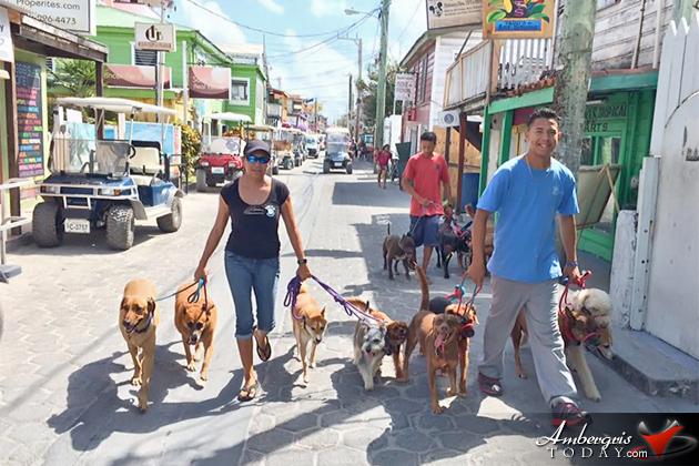 San Pedro Dog Whisperer Heads to California and Utah for Advance Training