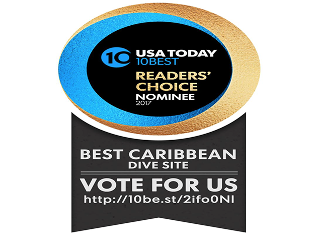 Belize Blue Hole Contender for Best Caribbean Dive Site - VOTE