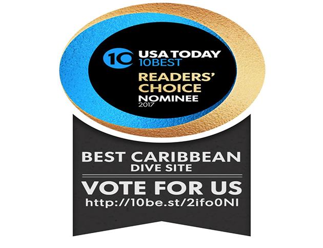 Belize Blue Hole Contender for Best Caribbean Dive Site - VOTE
