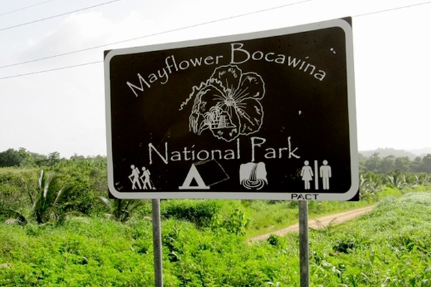 Two Men Fined $10,000 for Illegal Entry into the Mayflower Bocawina National Par
