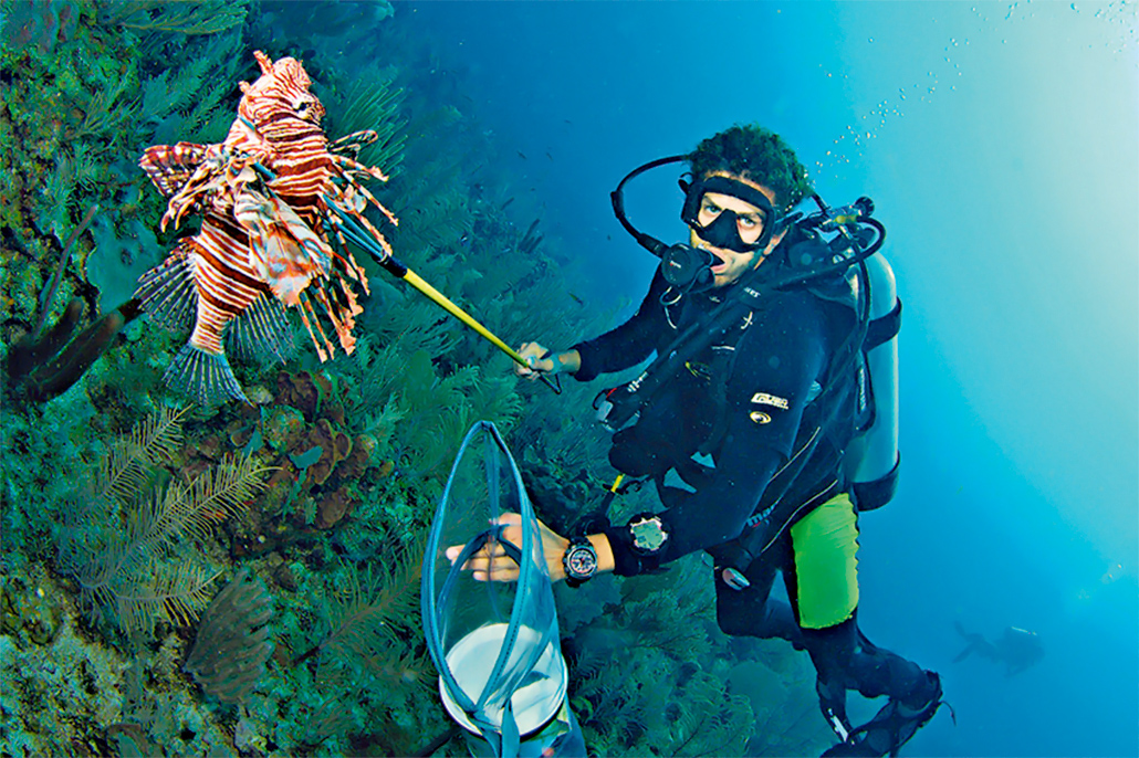 Belize Lionfish Hunting Best Marine Experience According to Food and Travel Mexico