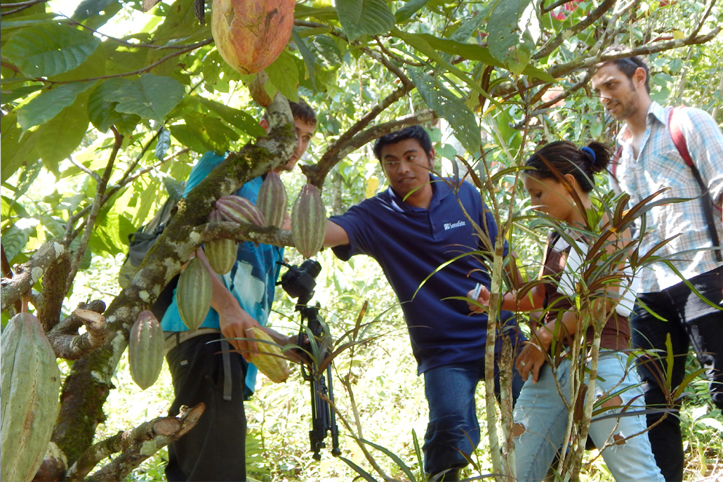 Belize's Cacao Industry Promoted in Chocolate Capital of the World