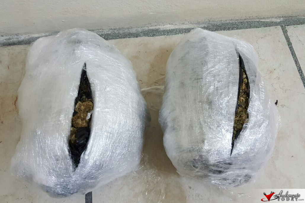 947 Grams of Cannabis Removed from Tropic Air Cargo San Pedro
