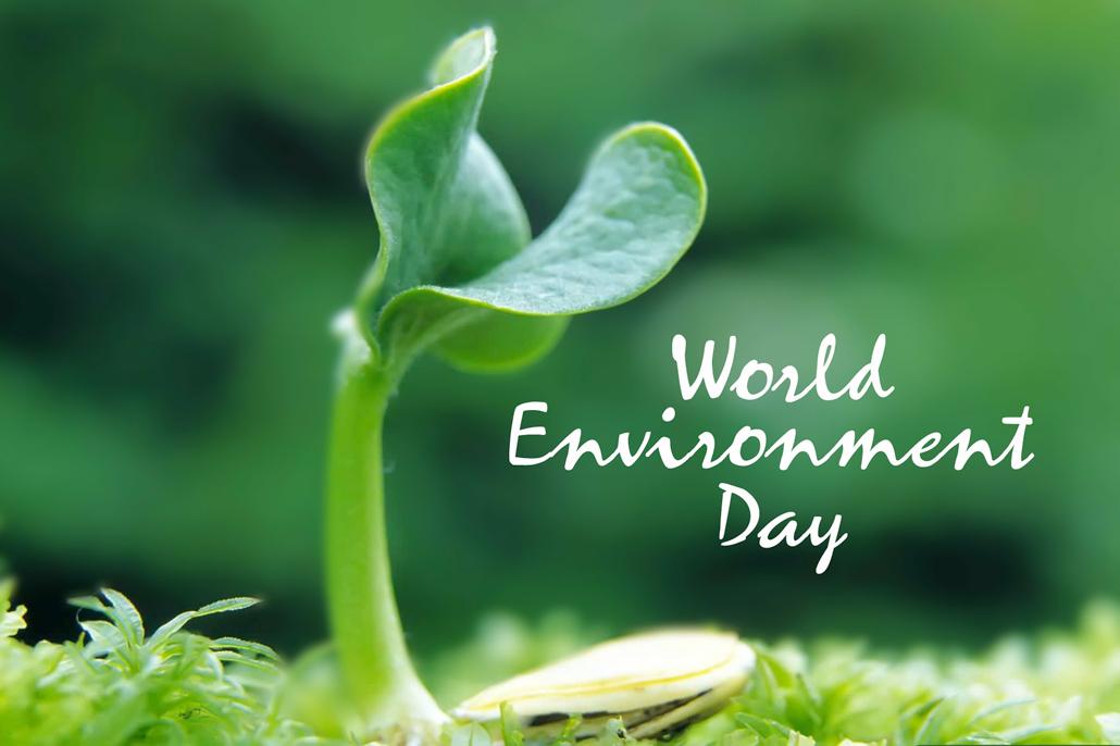 Belize Celebrates World Environment Day