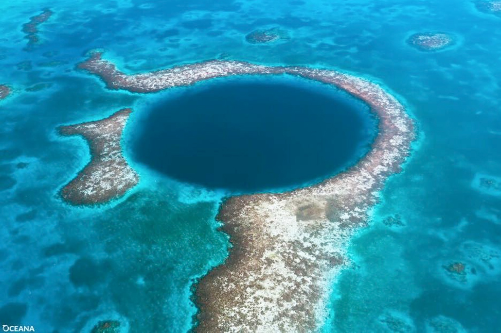 Director of World Heritage Center Welcomes Oil Moratorium at Belize Barrier Reef