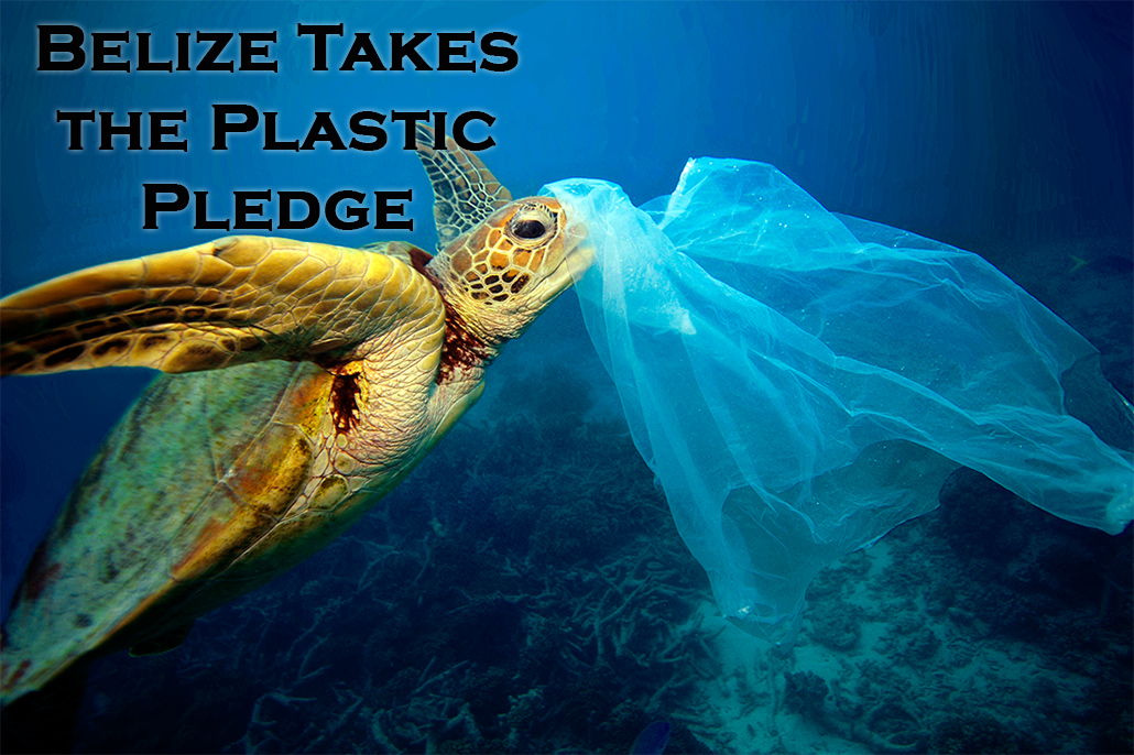 Belize to Phase Out Single-use Plastic Bags and Styrofoam and Plastic Food Utensils