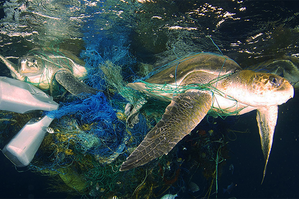 Belizeans Trained in Study of Marine Litter