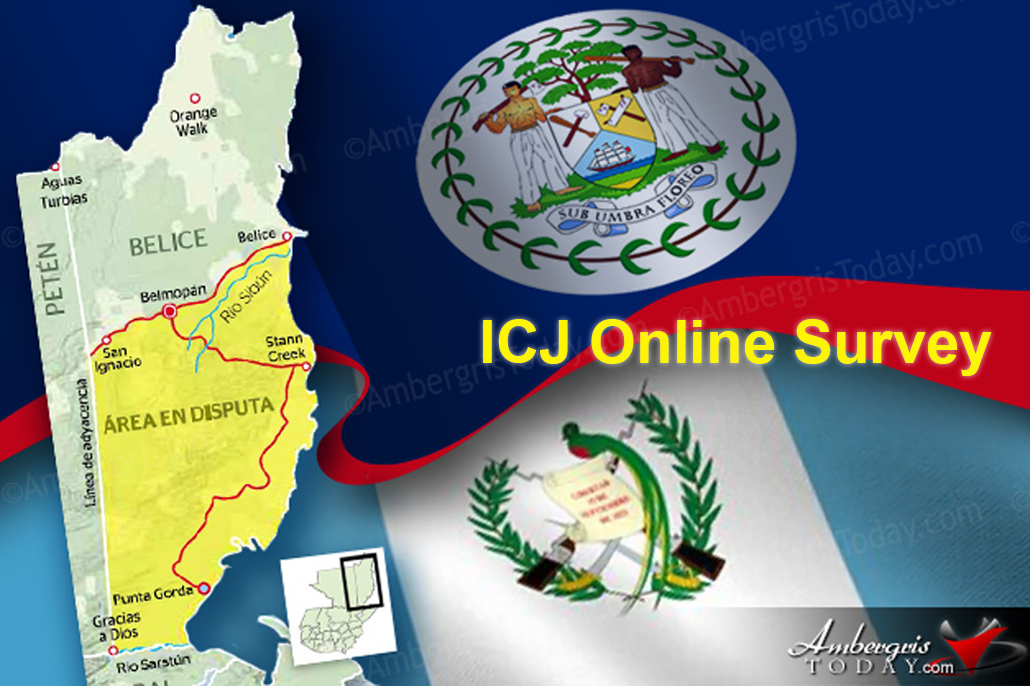 The Belize Network of NGOs Launches ICJ Online Survey
