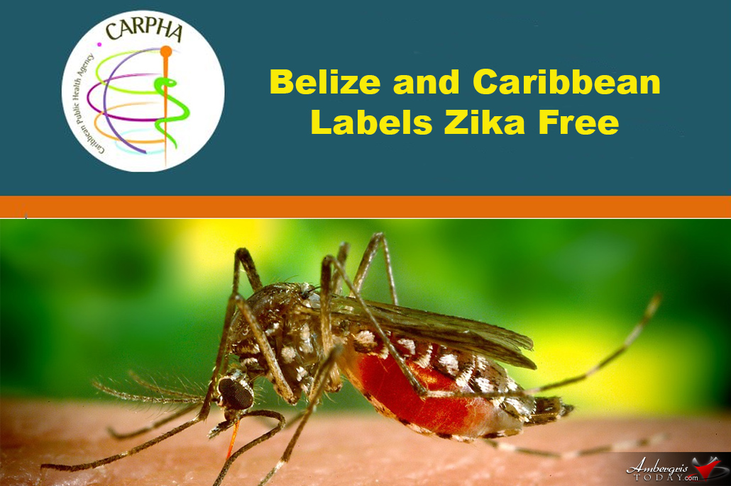 Belize and the Caribbean Labels Zika Free