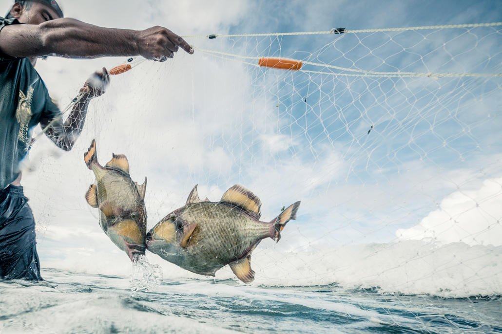 Belize Struggling With Battle Against Gillnet Fishing