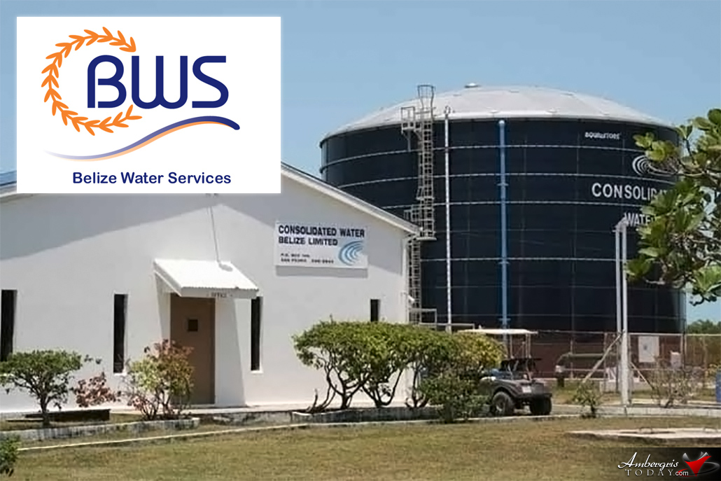 BWS Purchases Consolidated Water Belize Limited
