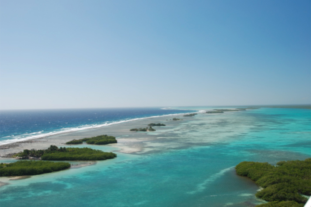Land Trust to Conserve Mangroves on Remaining National Lands on Turneffe Atoll