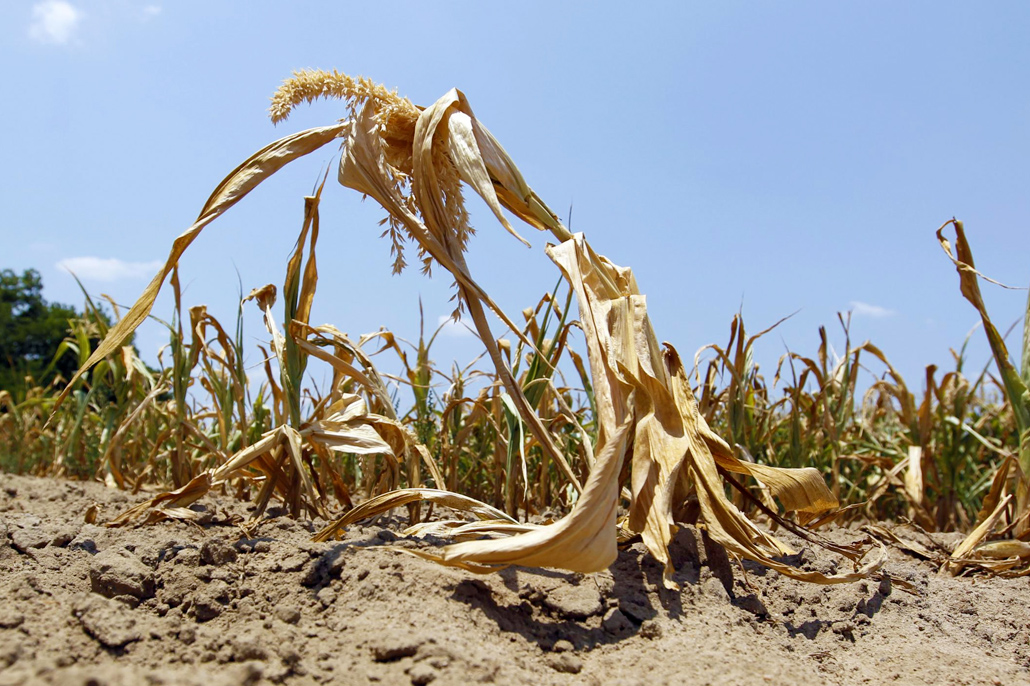 Drought Conditions Expected Through September in Belize