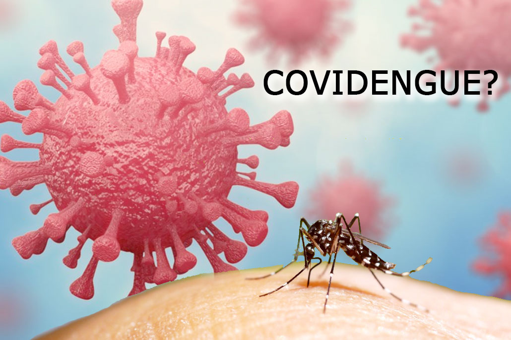 Dengue and Malaria Concerns Increase Alongside COVID-19 in Belize