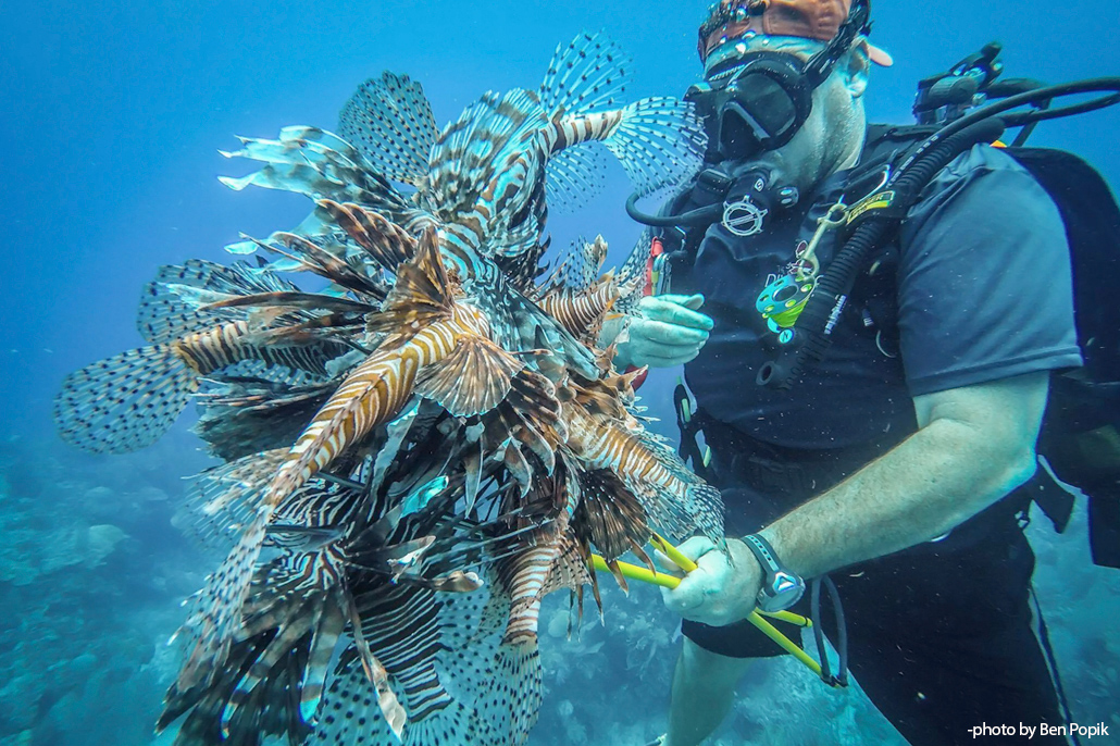 Slaying Lionfish in Belize - Douglas McLain